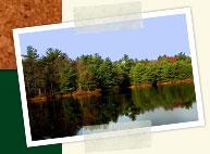 Groups_lake